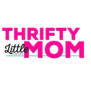 Thrifty Little mom