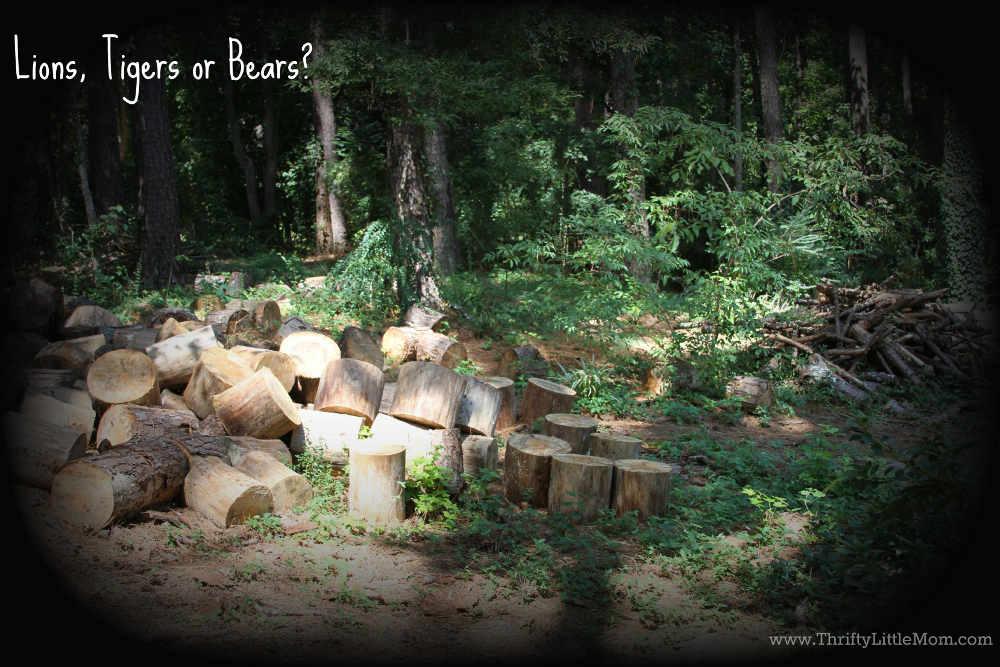 Lions Tiger or Bears Backyard
