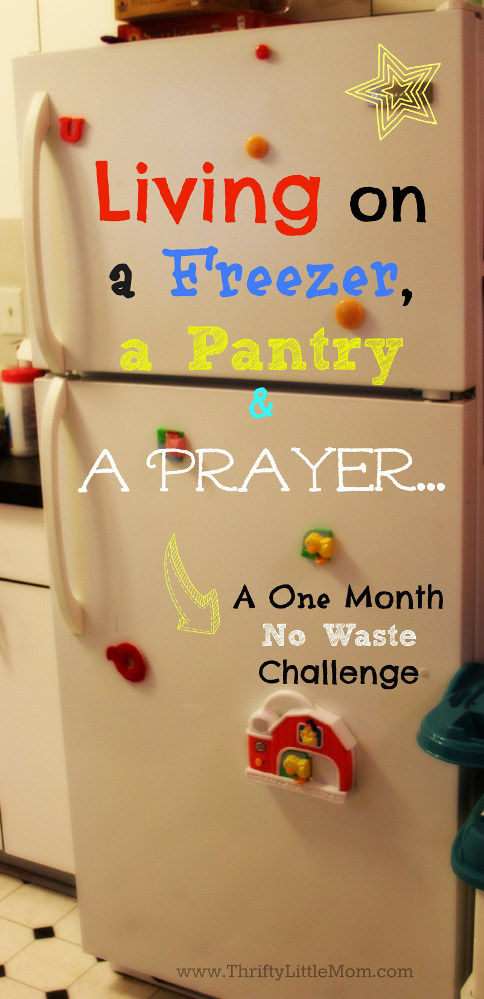 Living on a Freezer, Pantry and a Prayer.