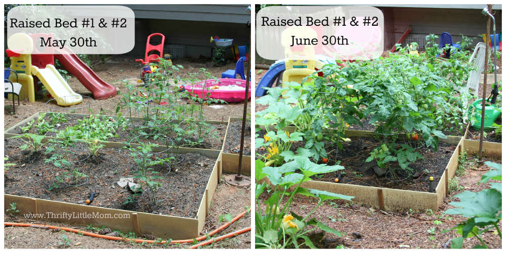 DIY Raised Garden Bed Before & After 1 &2