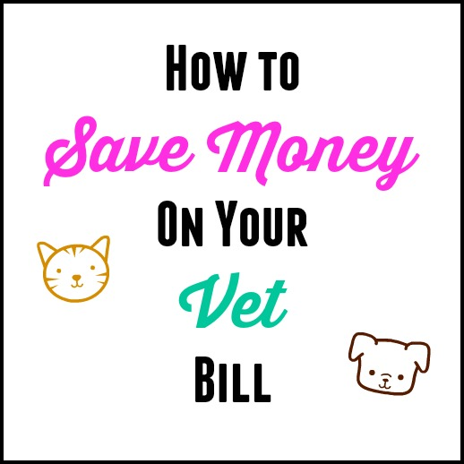 Saving Money On Your Animal Vet Bill