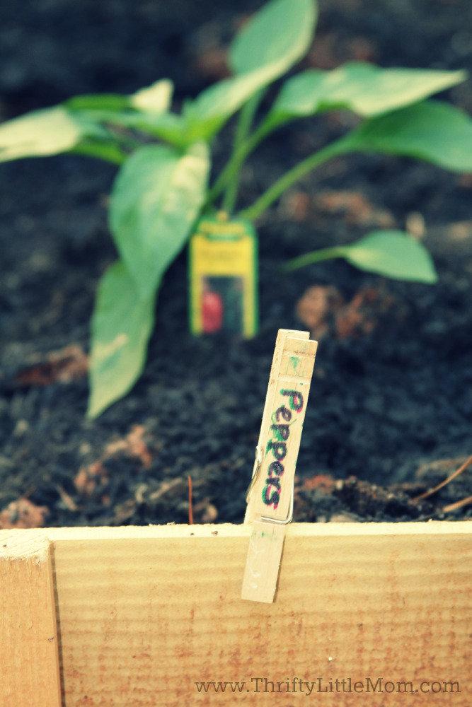 Garden Marker Craft Project Peppers