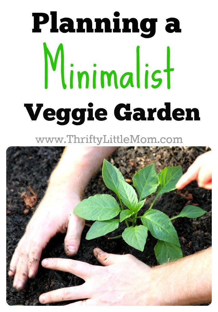 Minimalist Veggie Garden