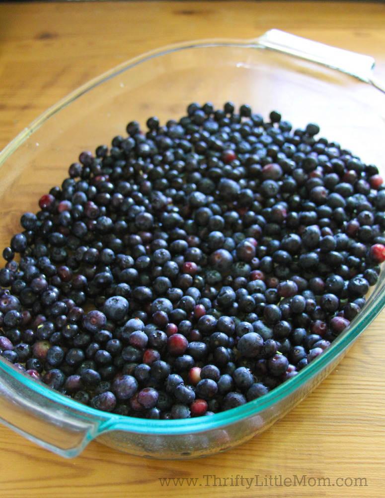 Blueberry Pineapple Crunch Cake 4