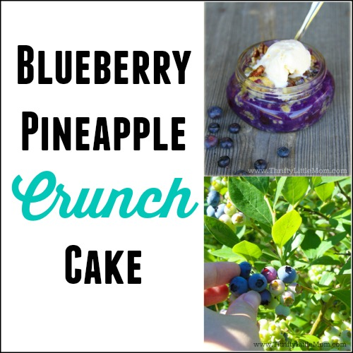 Blueberry Pineapple Crunch Cake Recipe