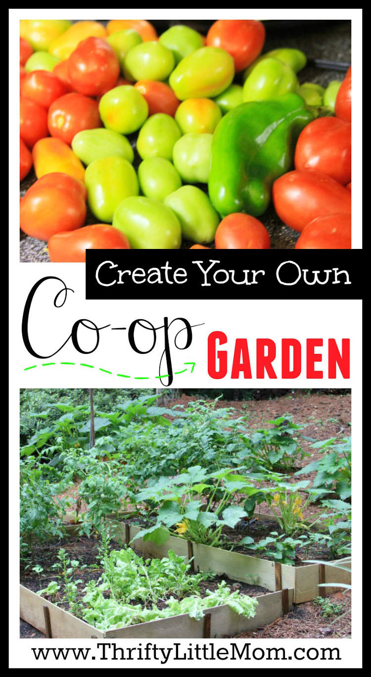 Create your own co op garden thrifty little mom for Design your own garden