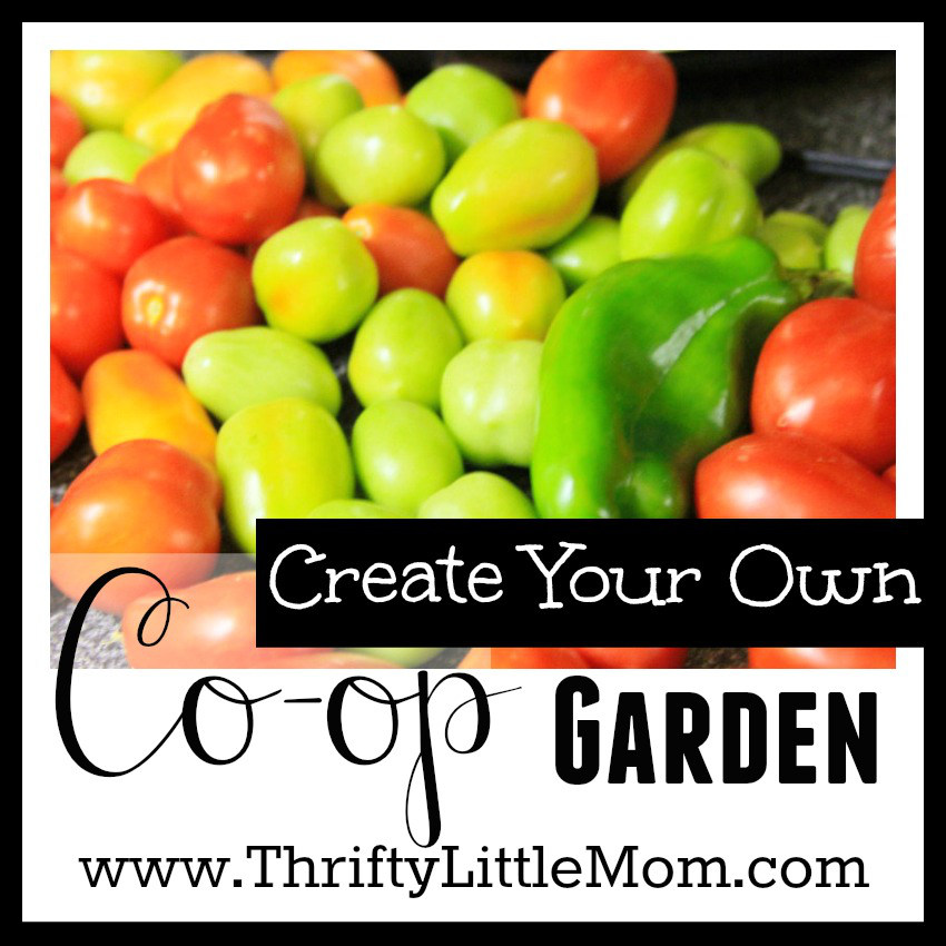 Creating your own garden co-op