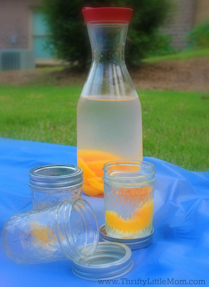 Frozen Fruit Water