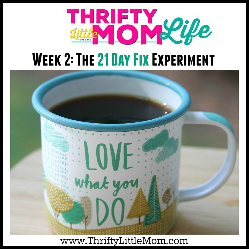 Thrifty Little Mom Life Week 2