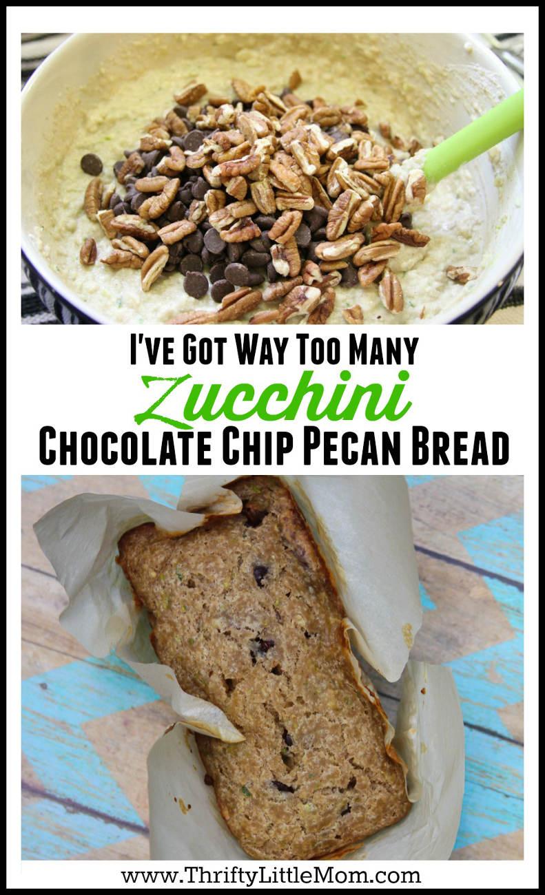 I've Got Way Too Many Zucchini Chocolate Chip Pecan Bread