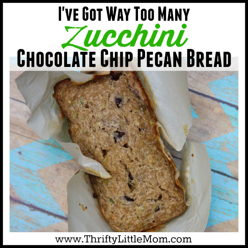 I've Got Way Too Many Zucchinis Chocolate Chip Pecan Bread Recipe
