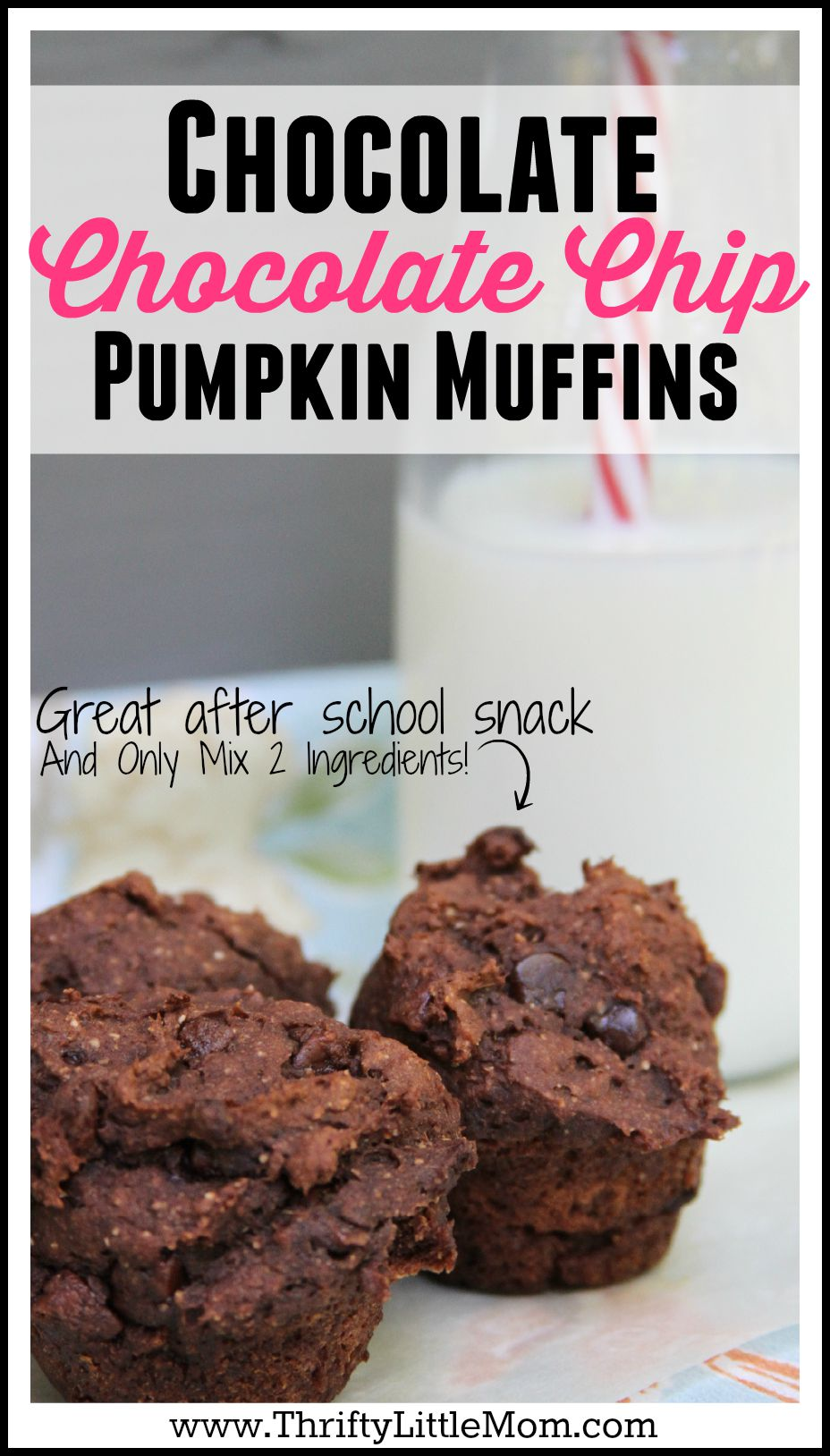 Store Like Chocolate Chip Muffin Recipe With Cake Mix