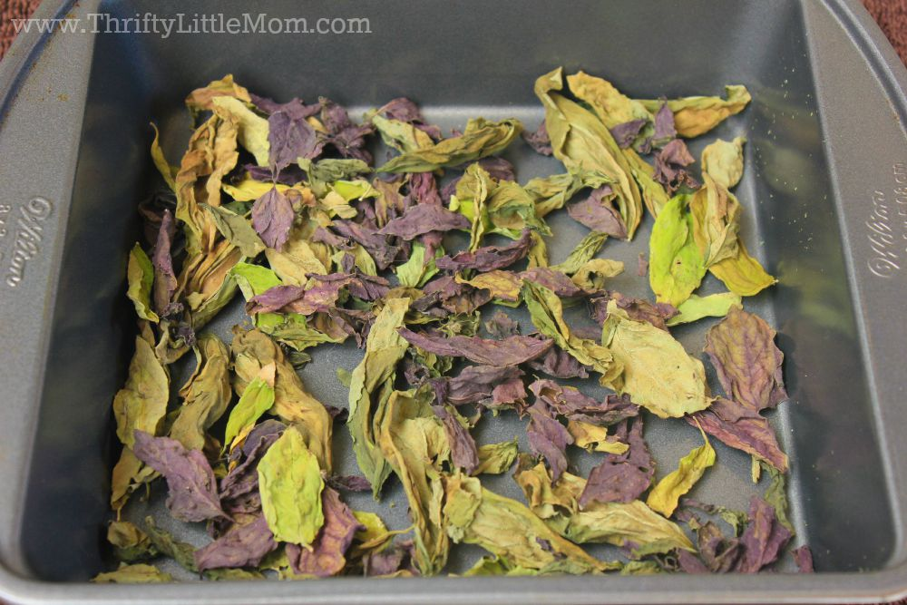 Pan Dried Herbs