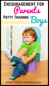 Encouragement For Parents Potty Training Boys