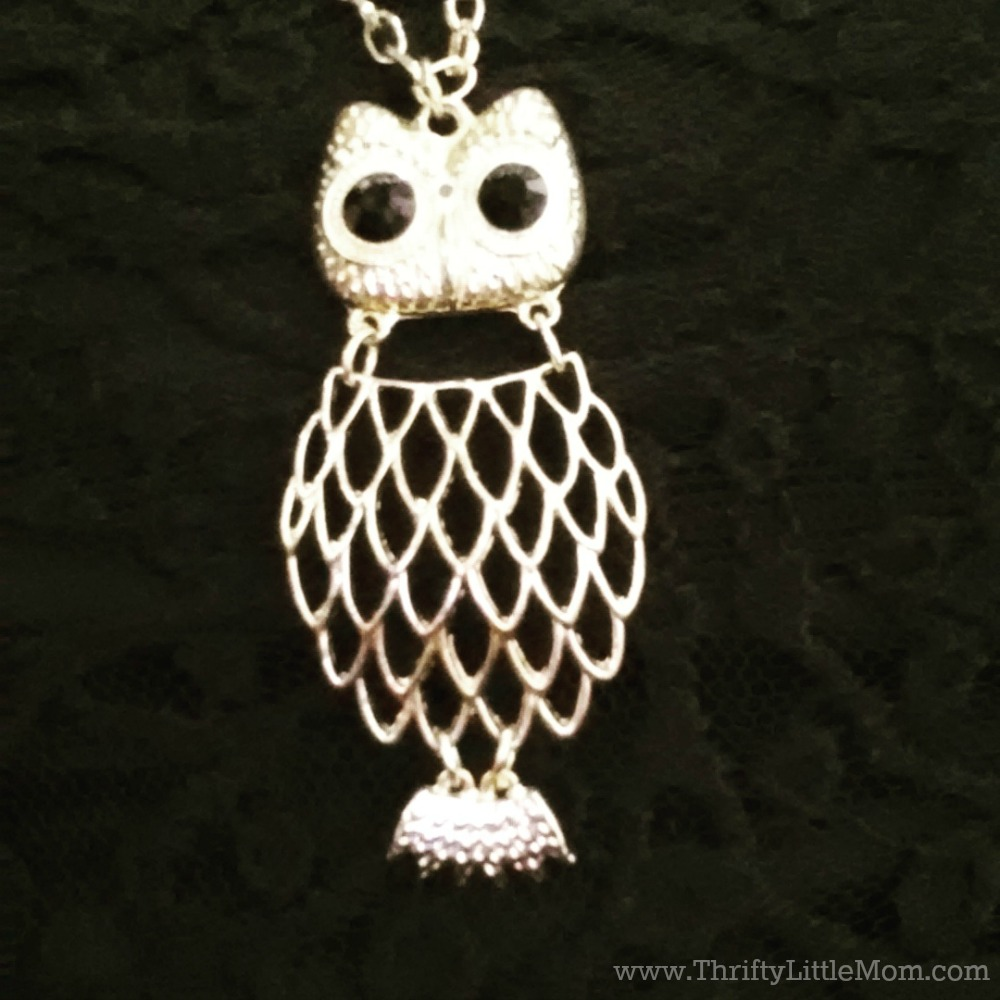 My Goodwill Owl Necklace