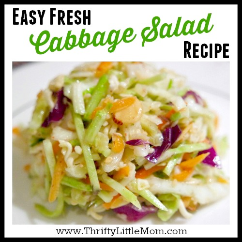 Easy Fresh Cabbage Salad Coleslaw Recipe » Thrifty Little Mom