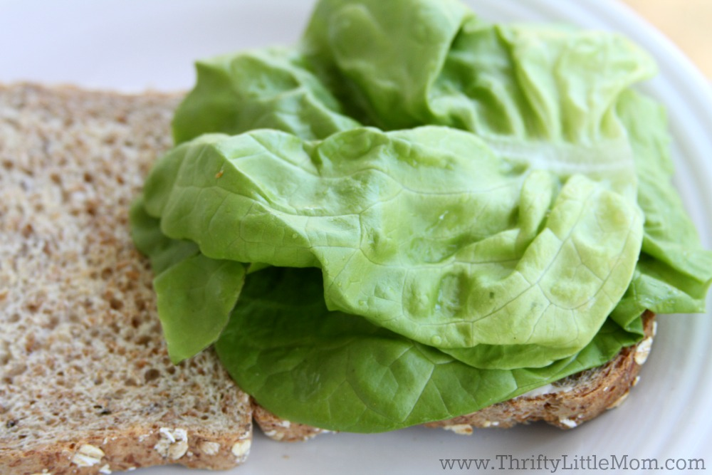 The Ultimate BLT Recipe Lettuce