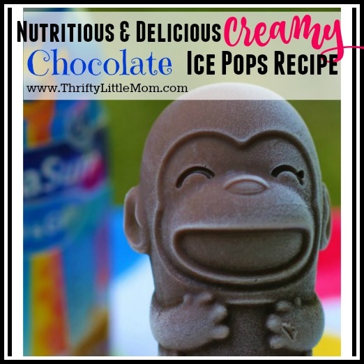 Kid's Creamy Chocolate Ice Pops Recipe