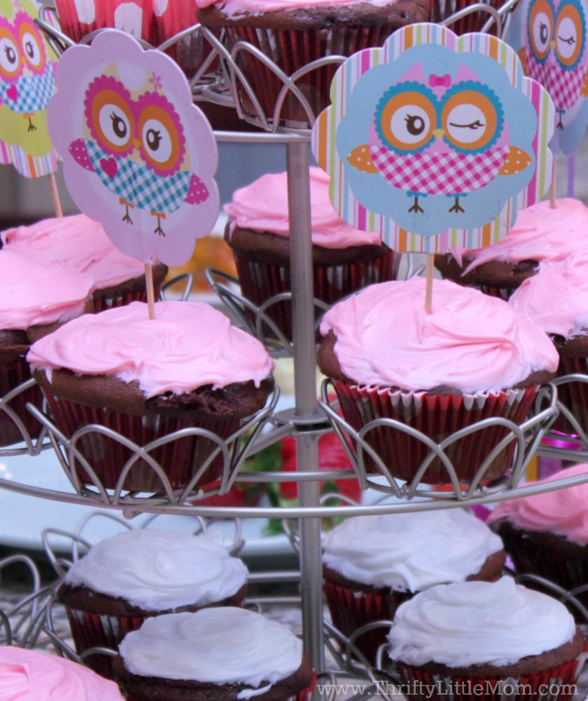 Planning a Cute Owl Themed Birthday Party? This post has lots of ideas for decorations, food, cake and cute usable party favors!