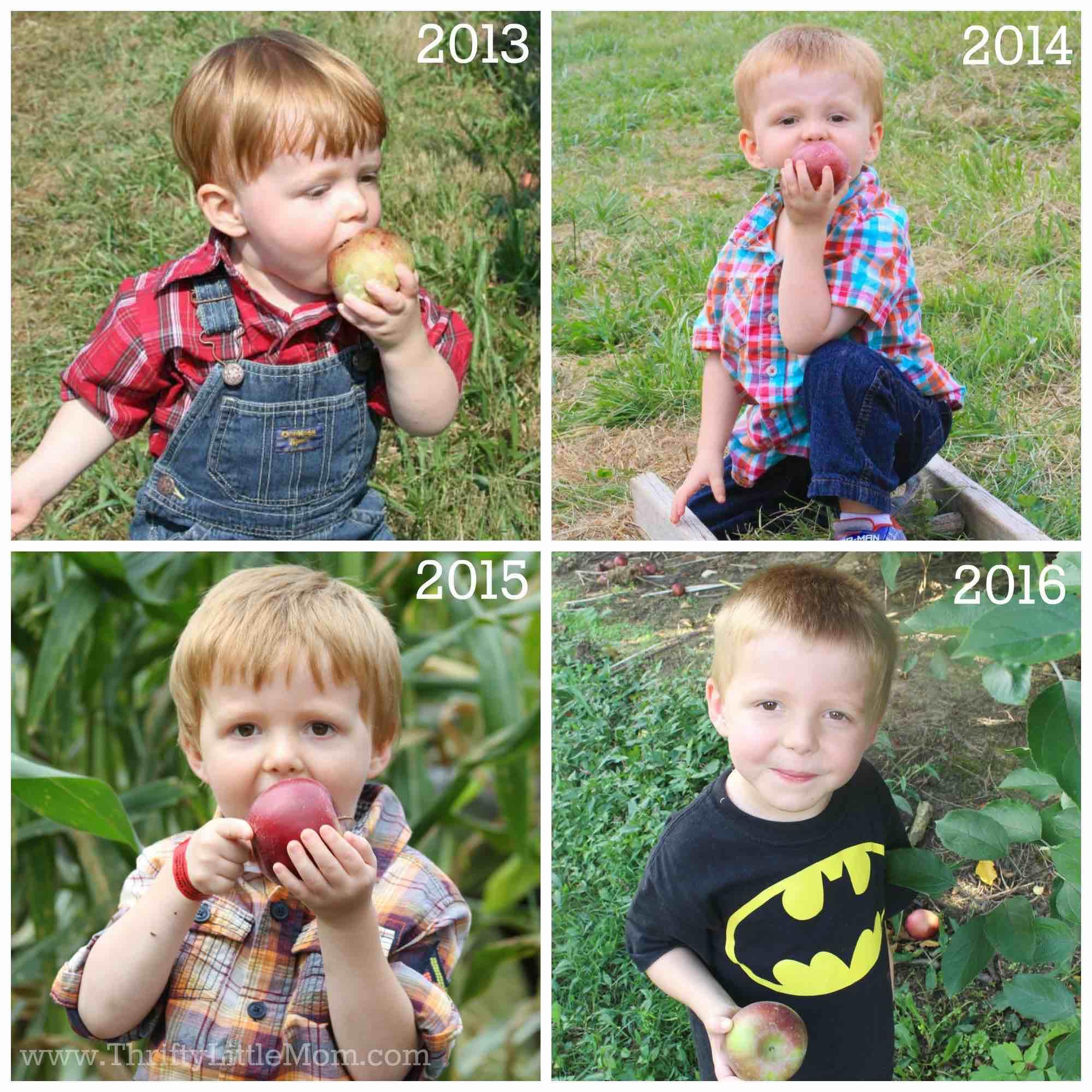 apple-picking-collage