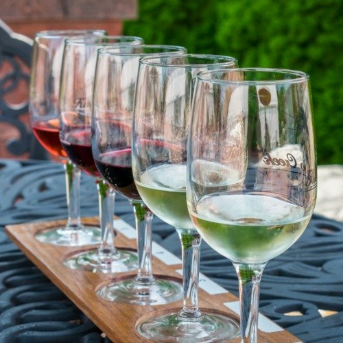 Wine For Beginners Guide: Drinking & Serving with Confidence