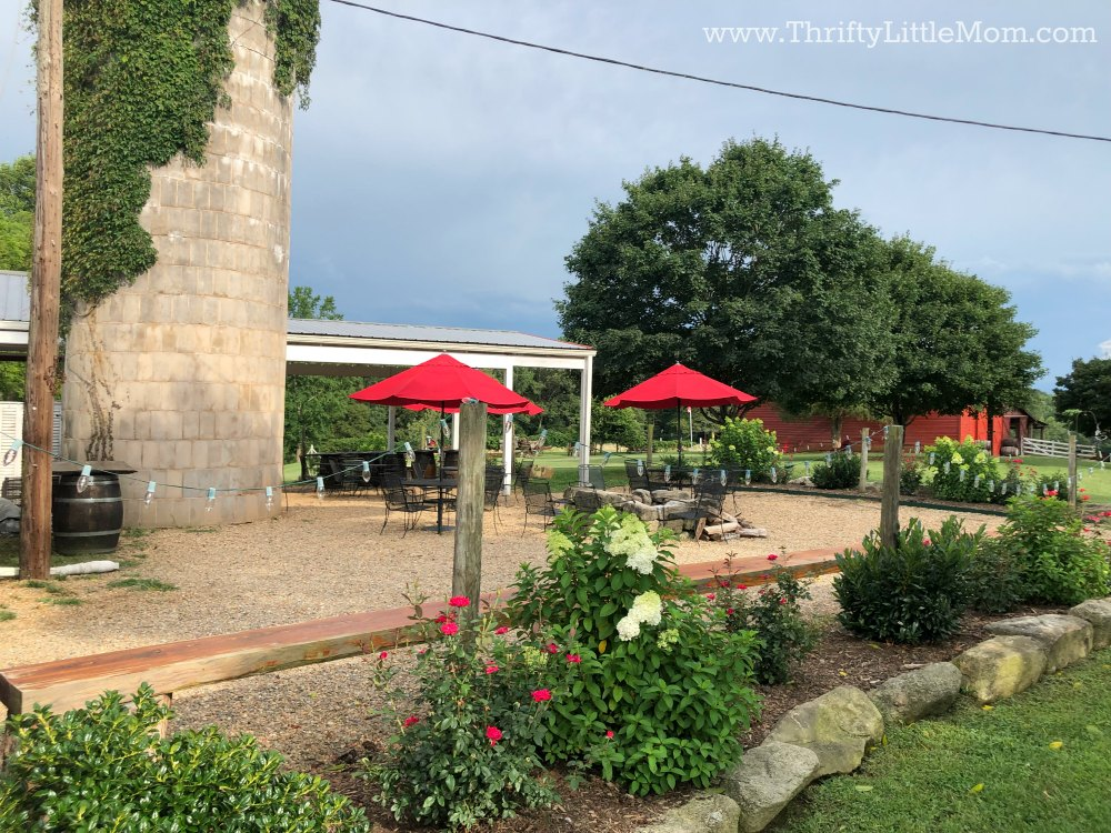 a beautiful vineyard provides gorgeous views and is a cheap birthday party option.