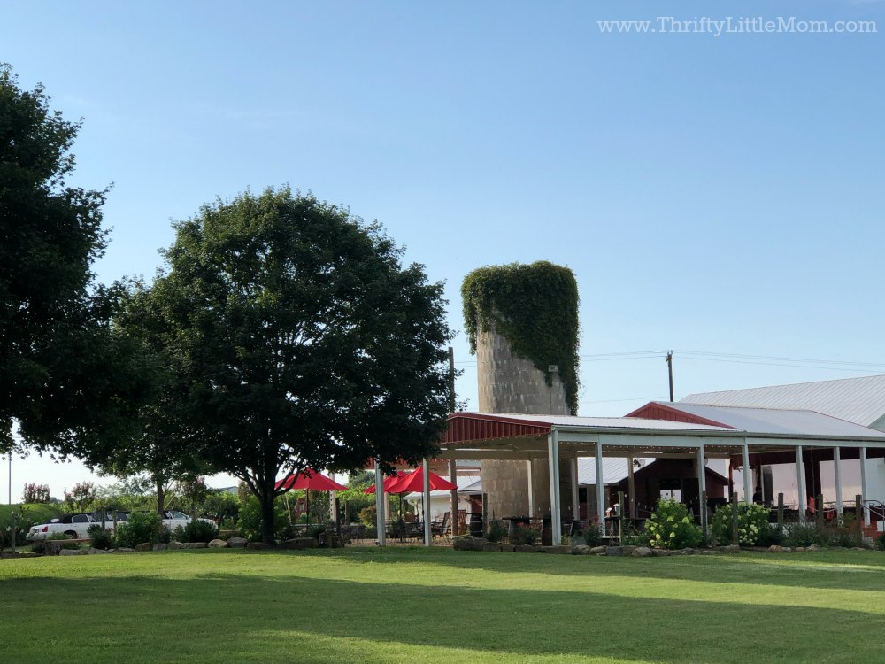 beautiful vineyard tour for a 60th birthday gift