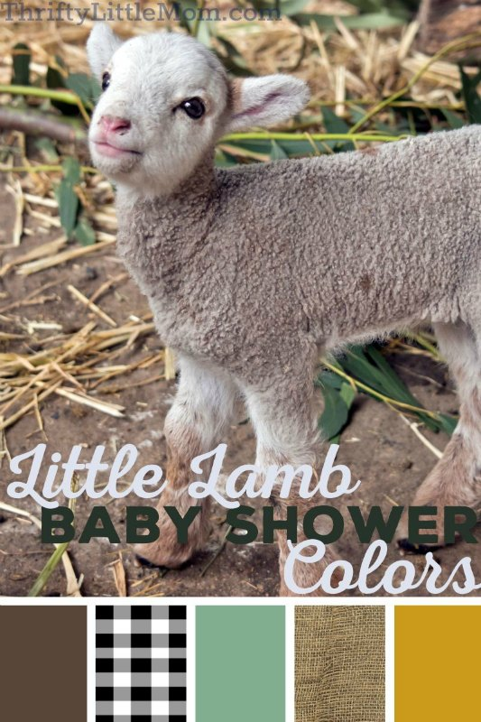 mary had a little lamb baby shower decoration ideas
