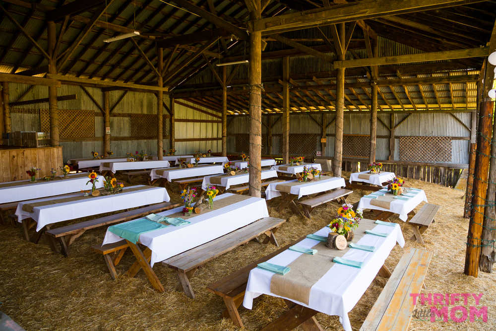 rent farm style benches for your party
