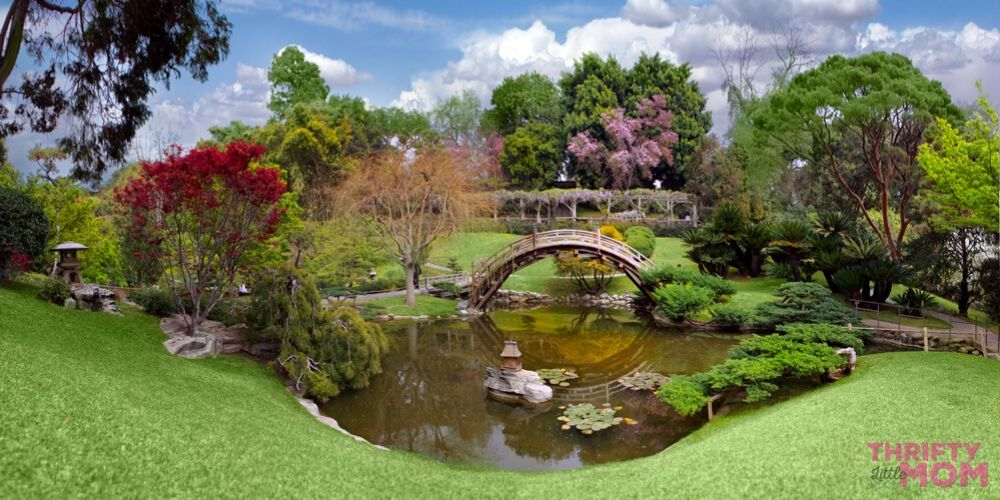 adult party theme in beautiful botaincal gardens with bridges are a fun activity for mother's day